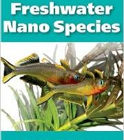 Now selling the new book! 101 Best Freshwater Nano Species!
